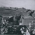 Historische Weinlese_4
